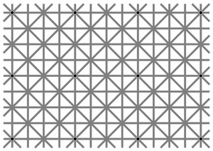 are you able to see all 12 black dots at the same time?