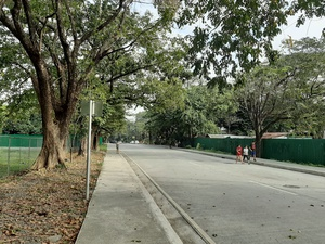 I live one jeepney ride away from the university. Going there to take a walk is a privilege I should be partaking of more often.