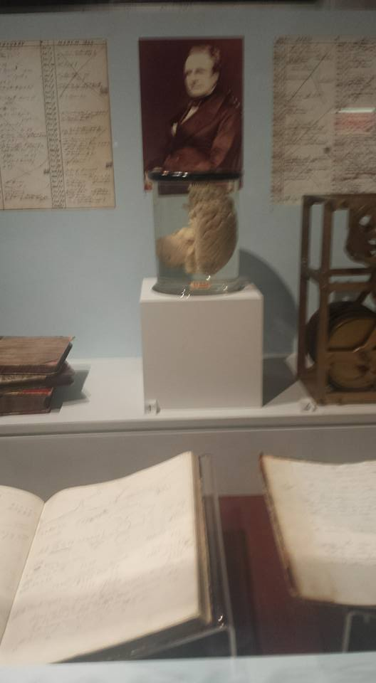 This is supposed to be half of Charles Babbage's brain, from the history of computing exhibit