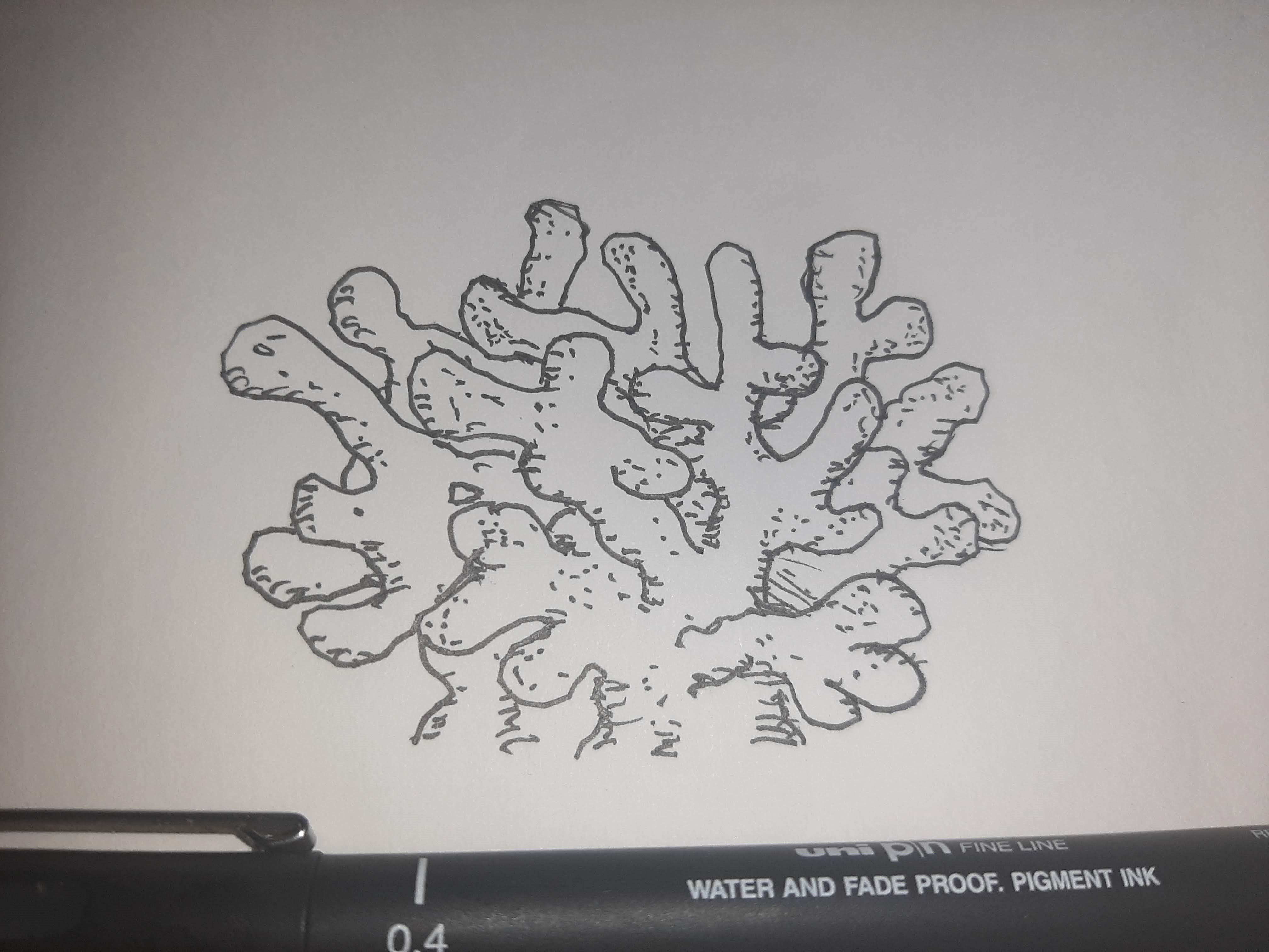Inktober 2020 day 20: CORAL I didn't spend too much time on this because I find corals weird and creepy. Official prompt list: https://inktober.com/rules